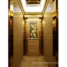 Ascenseur de passagers luxueux avec certificat GOST