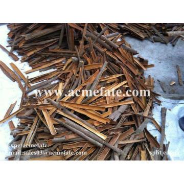 cassia broken from China