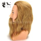 beautiful wholesale cosmetology 100%human hair mannequin heads