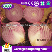 2014 Fresh Red Onion Supplier from China