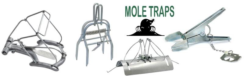 mole trap2