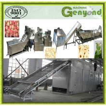 Hot Sale Dried Apple Chips Production Line