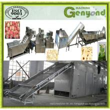 Línea de producción de chips de frutas secas al aire caliente