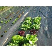 Циновка засорителя для сельского хозяйства и садов