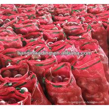 Китайский свежий лук 2012 цена