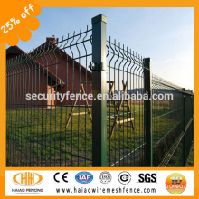 Made in China welded garden fencing net iron wire mesh ( ISO factory )