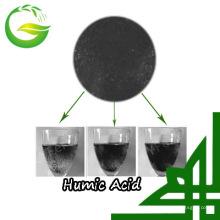 Adubo de ferro quelato orgânico ácido húmico