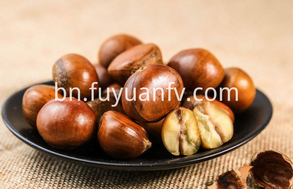 Fresh Chestnut 3