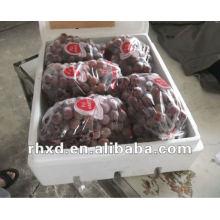 yan nan hong ti grapes fruits
