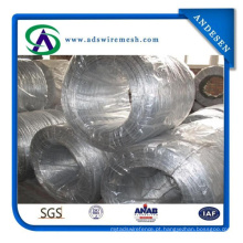25kg / rolo, fio quente de 20kg / Roll Galvanzied / eletro fio do ferro de Glavainzed