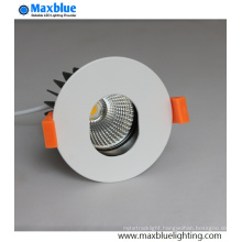 Oval Shape LED Down Light for Hotel Decoration solution
