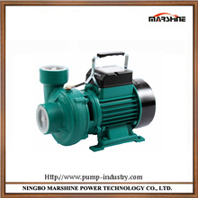 Horizontal portable centrifugal booster pump 220V