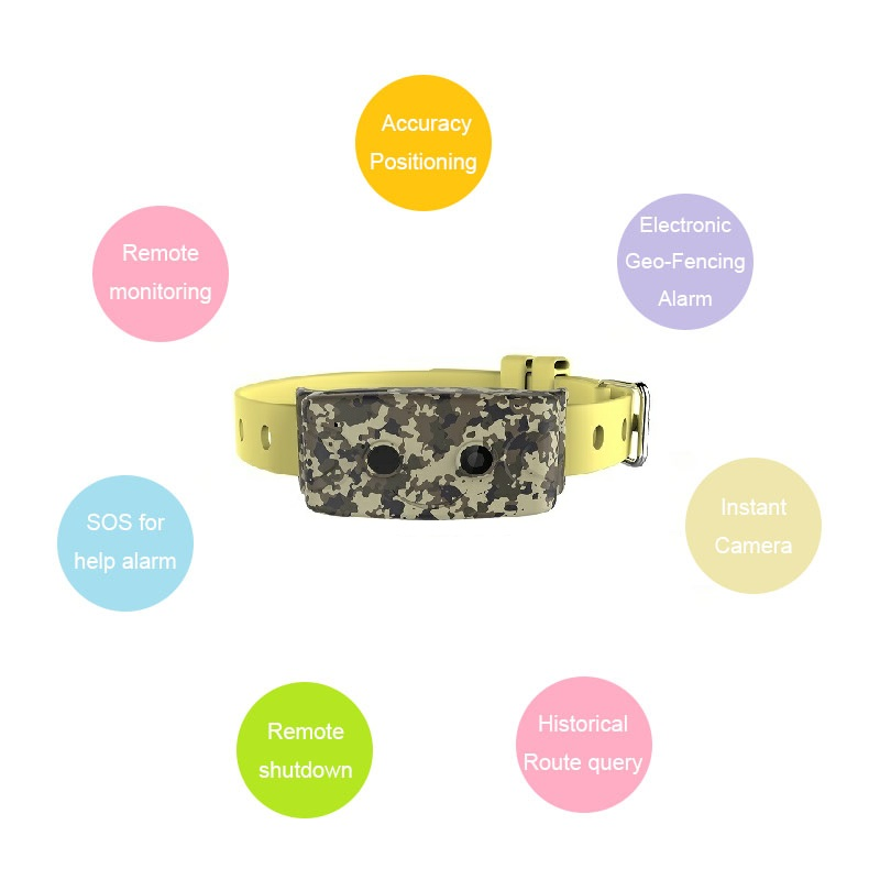 Real-time Cat Dog GPS Activity Tracker Locator