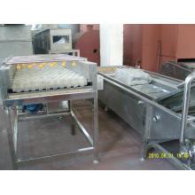 Máquina de lavar roupa profissional vegetal