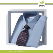 High Quality Fashion Cotton Business Shirt for Men (S-14)