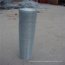 Standard Quality Welded Wire Mesh Galvanized For Vermin Control