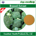 extrait de brocoli naturel Sulforaphane