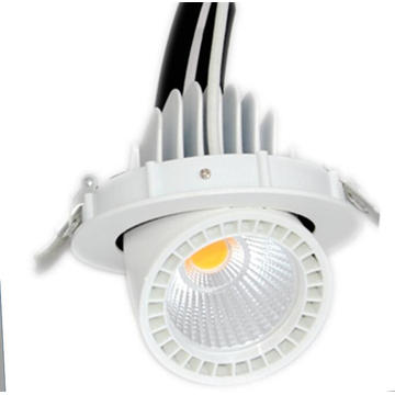 10W 15W Small LED Trunk Ceiling Light