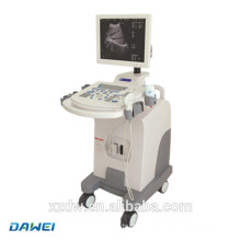 DW-350 low price full digital trolley ultrasound scanner