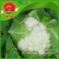decorating cauliflower