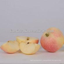 pomme qixia