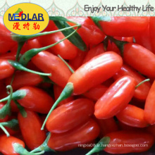 Méduse Wolfberry Goji Lycium Chinense