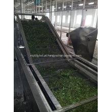 Equipamento de secagem por correia de carbono ativado