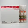 Pharmaceutical Diclofenac Potassium Difen-Guyenne B12 Injection