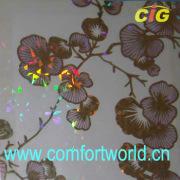 Esteiras de mesa grande de Pvc cristal