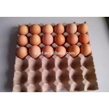 En mayo, el precio de promoción del cartón de huevos de 30 hoyos es el más bajo