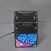 LED Illuminated Acrylic Jewelry Display (LZ-AP)