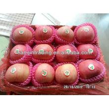 preço fresco da maçã de shandong fuji
