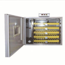 Durable Automatic Chicken Egg Incubator Hatching Machine With Adjustable Temperature