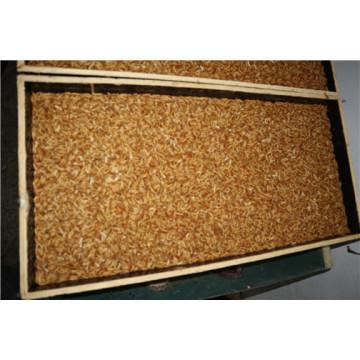 Gefriergetrocknete Mehlwürmer Für Vogel