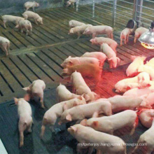 Factory Price Fiber Reinforced Wean Farrowing Rearing Warm Pig Sow Feed Save Rubber Mat