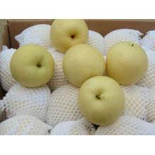 China Su Pear