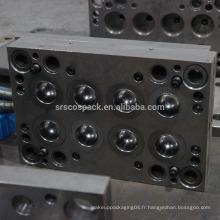Longue années Fabricant professionnel conception de moules, moule d'injection, moule d'injection plastique pour pot en plastique