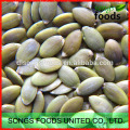 Shine Skin Pumpkin seeds kernel