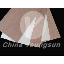 Discount Price Pet Film for Teflon Glass Fabric Porous /breathable PTFE Fabrics for peel ply export to Bermuda Manufacturers