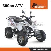 300CC Quad-Bike