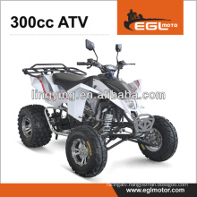 300CC Quad Bike