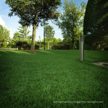 Cheap price outdoor customized garden evergreen green grass for home