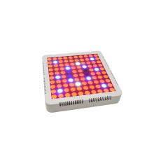 Cheaper and lighter UV IR 390NM 730NM 100w full spectrum led grow light for Greenhouse