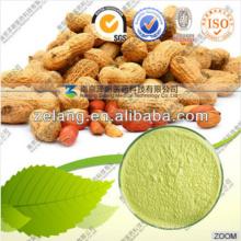 Hersteller Lieferung Natural 98% Luteolin