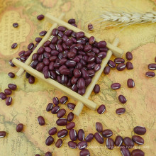 Маленькие красные бобы и рис