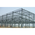 Newest Hot Prefab Steel Structure (WSDSS004)