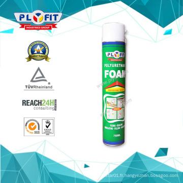 Mousse de pulvérisation en PU extensible de 750 ml