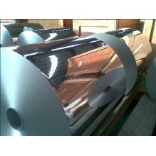 1100/1050/3003/3105/5052 Aluminum/Aluminium Coil