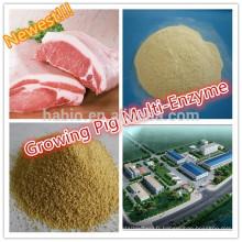 Enzyme de croissance de composé de porc / enzyme multiple