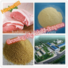 Growing Pig Compound Enzyme/multi enzyme